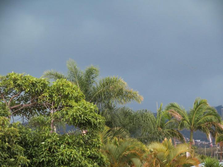 rain (2 of 3)_4000x3000