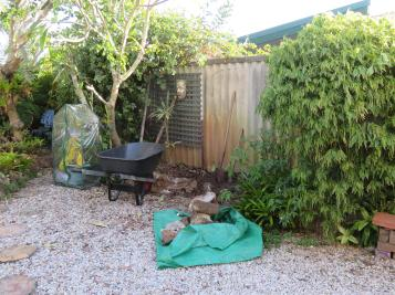 greenhouse garden front deck 017_5184x3888