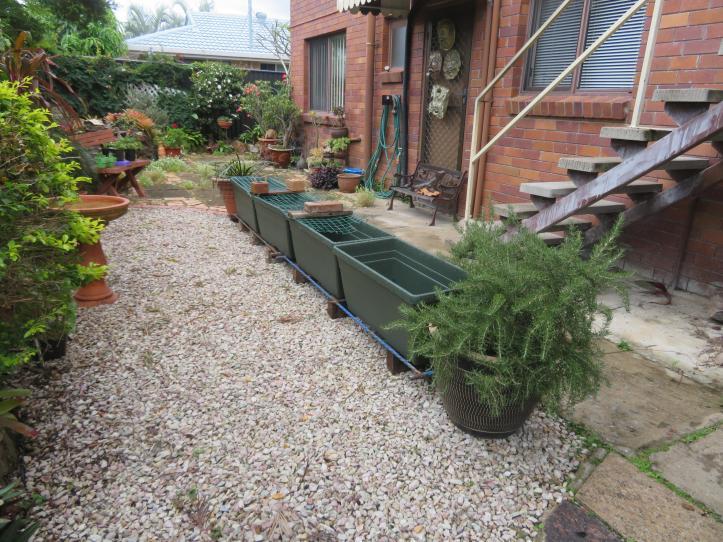 greenhouse garden front deck 021_5184x3888