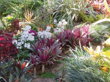 august garden birds 071_5184x3888