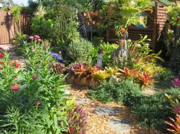 august garden birds 077_5184x3888