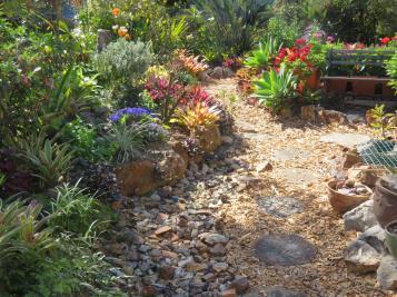 august garden birds 102_5184x3888