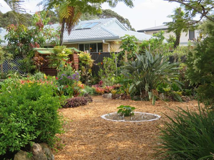 september changing seasons garden 036_5184x3888