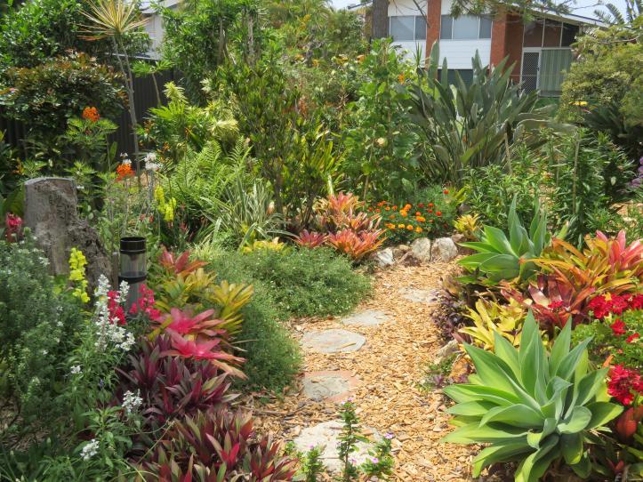 oct garden 016_5184x3888