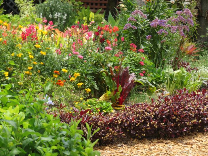 oct garden 022_5184x3888