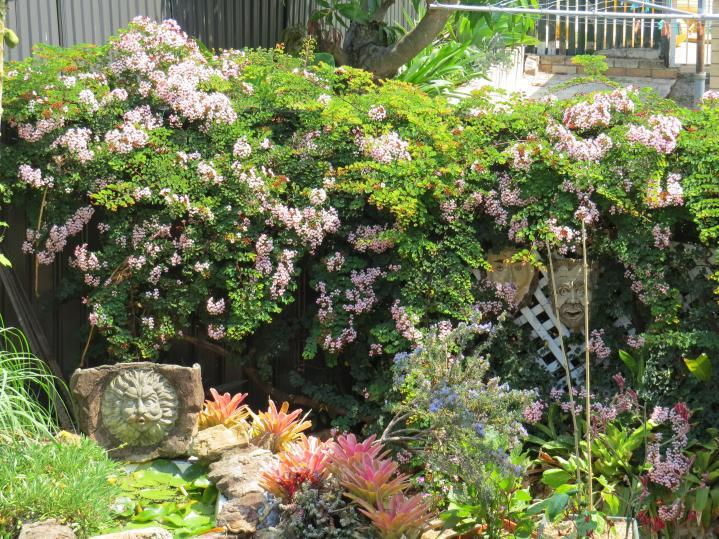 jacks garden phopos 035_4000x3000
