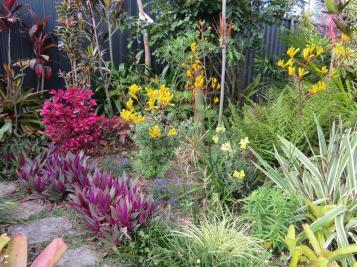 november garden pc 028_5184x3888