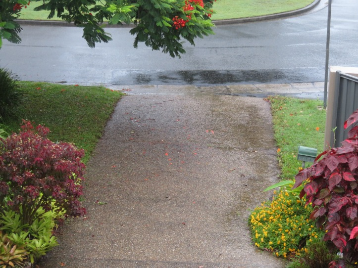 rain video 004