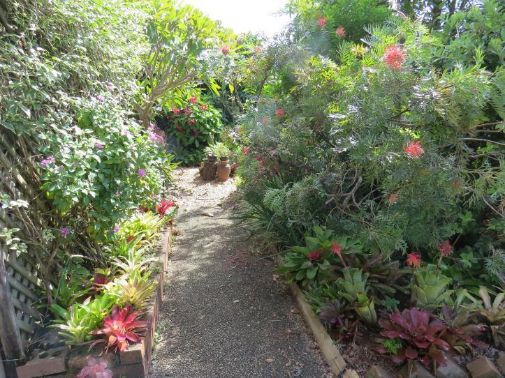 march garden 045_4000x3000