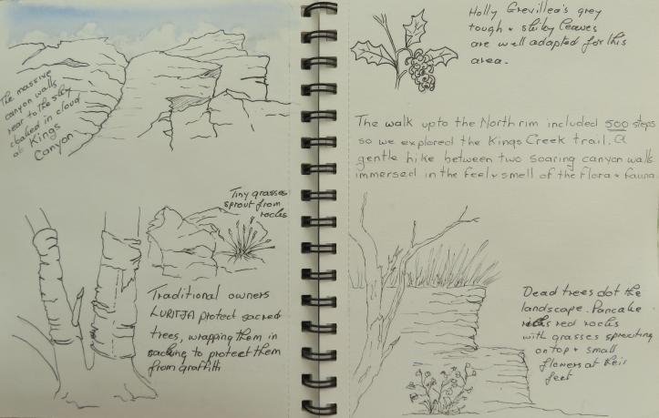 art journal and garden video 005_4813x3062