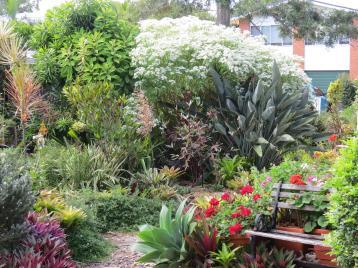 may garden pc 004_4000x3000