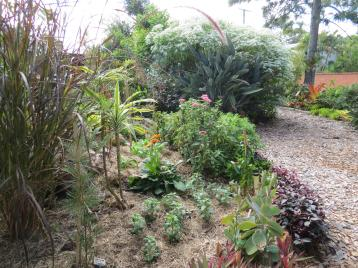 may garden pc 007_4000x3000
