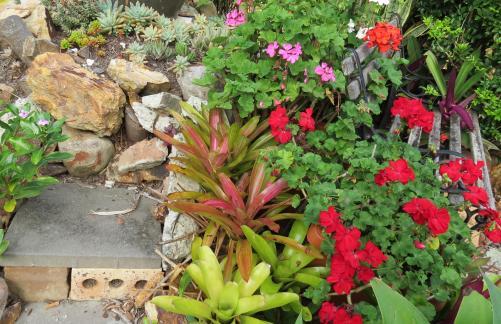 may garden pc 016_3507x2271