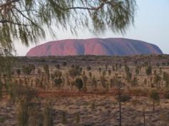 outback tour uluru pc 161_4000x3000