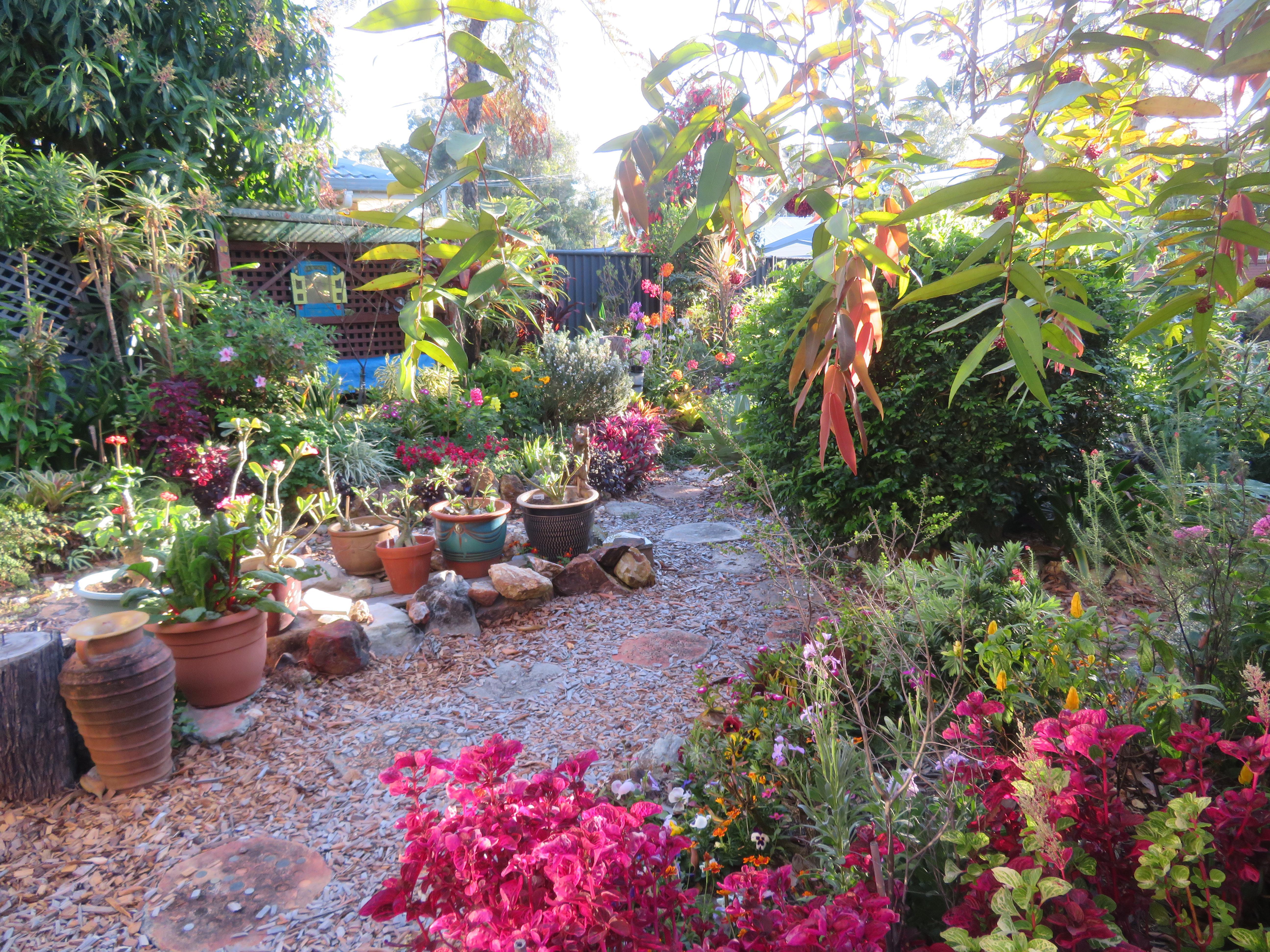 september garden 001_5184x3888