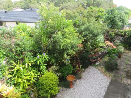 February garden 004_5184x3888