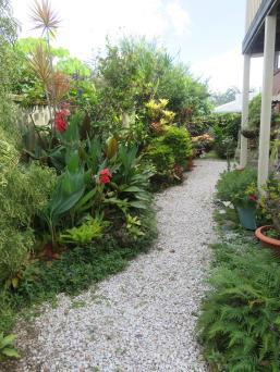 February garden 008_3888x5184