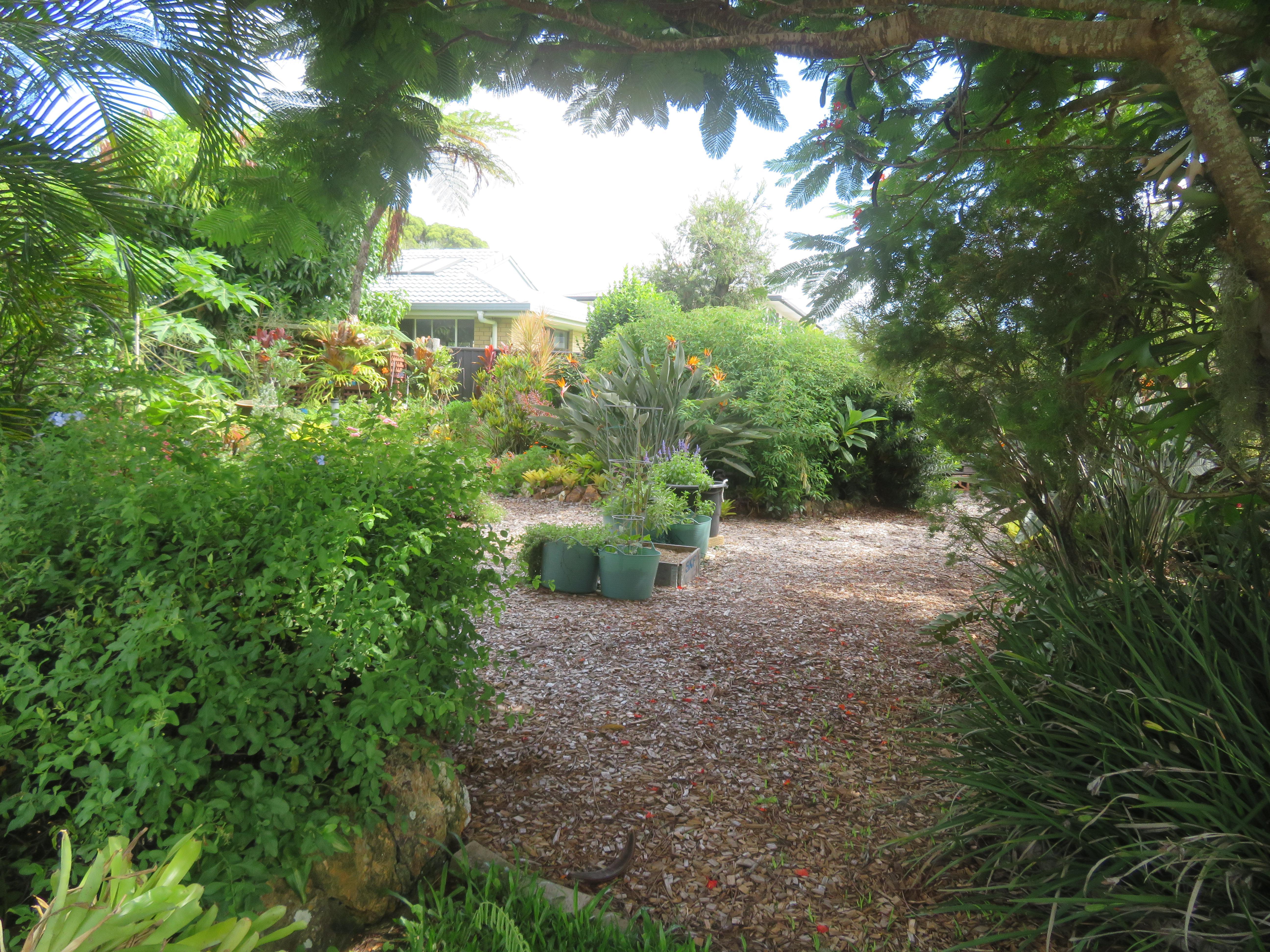 February garden 013_5184x3888