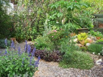 February garden 018_5184x3888