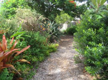 February garden 020_5184x3888