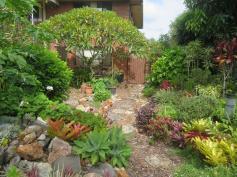 February garden 023_5184x3888