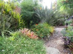 February garden 028_5184x3888