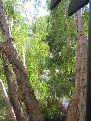 botanical gardens gc 023_3888x5184