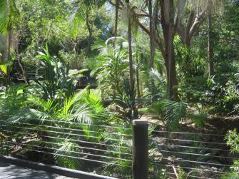 botanical gardens gc 026_5184x3888