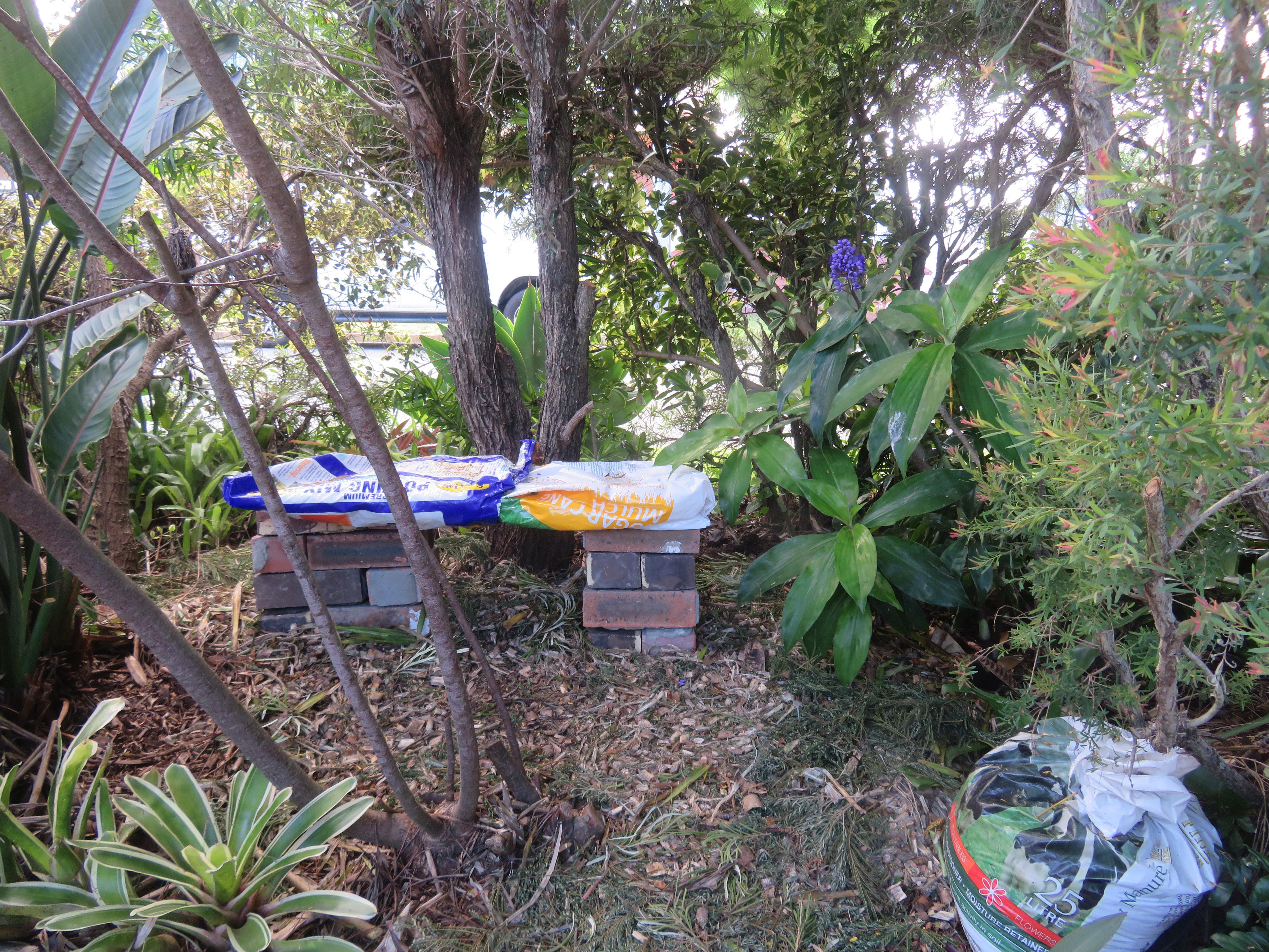 march garden 005_5184x3888