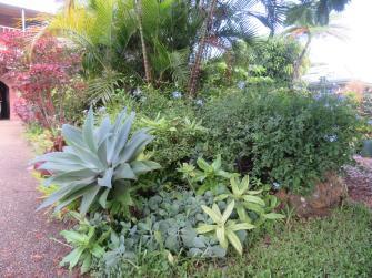 march garden 007_5184x3888