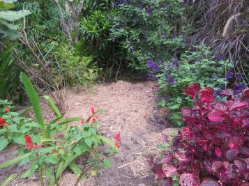 march garden 009_5184x3888