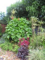 march garden 013_3888x5184