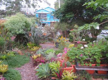 april garden 008_5184x3888