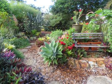 april garden vegies 012_5184x3888