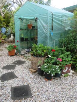 garden mid august 060_3888x5184